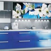 Кухня с фотофасадом (белые цветы) фото
