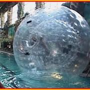Водный аттракцион в аквапарке Джунгли для детей и взрослых - Аттракцион Зорб фото