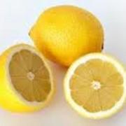 Лимоны продажа, импортная продукция ОПТОМ фото