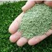 Гранулят резиновый для искусственной травы фото