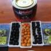 Оливки с косточкой фото