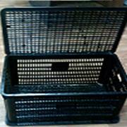Ящик черный для перевозки птицы, кроликов, поросят, и других животных (г.Караганда) , Казахстан фото