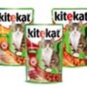 Корм для котов Kitekat в желе 100 г фото