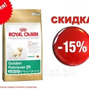 Сухой корм для собак Royal Canin Golden Retriever Junior 29 12 кг фото