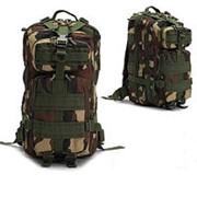 Рюкзак тактический патрульный V-25л WOODLAND фото