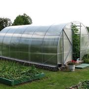 Теплицы садовые, фермерские, промышленные фото