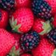 Наполнители фруктово-ягодные фото
