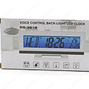 Термометр электронный DS-3618 фото