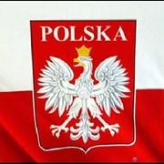 Курсы польского  языка.  фото