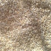 Талкан рисовый фото