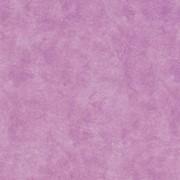 Ткань мебельная Canvas Pelle Violet фото