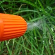 Диагностика газона, рекомендации и лечение фото
