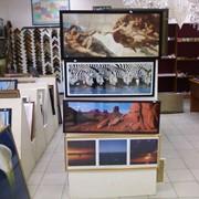 Постеры на холсте всемирноизвестных живописцев фото
