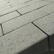 """Тротуарная плитка """"Кирпичик"""" без фаски 198*98*60  фото"""