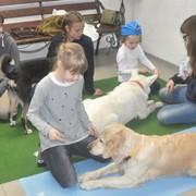 Развивающие занятия с собаками-терапевтами «Почитай собаке» фото