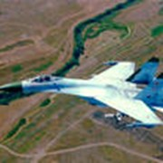 Полеты на спортивных самолетах фото