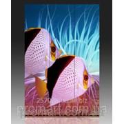 Ширма одностороння на полотні 120х180 см Тропічні риби код SH-053-120-180 фото