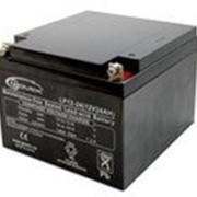 Батарея Gemix LP12-24 (00320025) фото