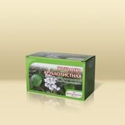 Грушанка круглолистная, трава № 20 х1,0 гр. фото