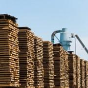Переработка древесины фото