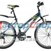 Велосипед горный Seido 1.0 фото