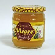 Полифлерный мёд 530 грамм фото