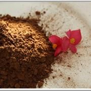 Какао-порошок алкализованный, производство Малайзия фото
