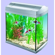 Аквариум AquaArt Coldwater фото