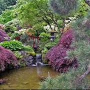 Планировка сада. Озеленение сада. Благоустройство сада. Ландшафтный дизайн. Ландшафтный дизайн сада фото