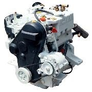 Двигатель судовой (прогулочный) 4021 M20 фото