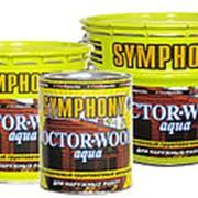 Водоразбавляемый грунтовочный антисептик SYMPHONY DOCTOR-WOOD Aqua фото