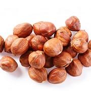 Фундук (лесной орех), мелкий опт фото