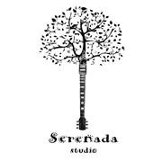 """Гитарная студия """"Serenada"""" фото"""