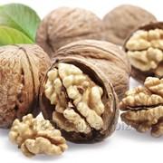 Грецкий орех (Juglans) фото