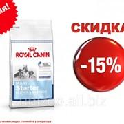 Сухой корм для щенков Royal Canin Maxi Starter (Роял Канин Стертер) 4 кг фото