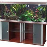 Изготовление аквариумных комплексов фото