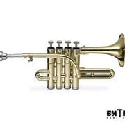 Труба пикколо Stagg 77-TP фото
