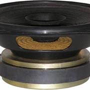 Головка динамическая широкополосная 100ГДШ65 фото