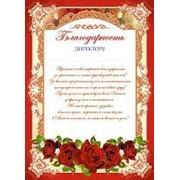 Благодарность директору, картон, Сфера, (20 шт.), Ш-006526 фото