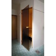 Стеклянная дверь для бани ALDO матовая фото