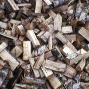 Заготовка дров фото