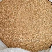Пшеница в мешках фото