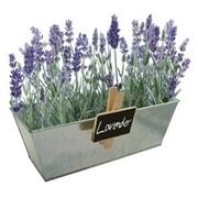 Лаванда Сад на окне Paris Garden наборы для выращивания, (PG-7530) фото