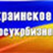 Управление бизнесами в Украине фото
