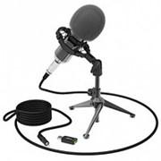 Микрофон Ritmix RDM-160 USB на штативе чёрный, ветрозащита фото