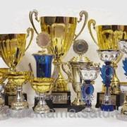Кубки спортивные, наградные фото