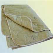 Одеяло Верблюжья шерсть (1,5-ое облегченное) фото