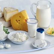Заготовка молочной продукции фото