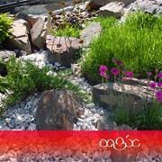 Создание рокария. Каменный сад фото