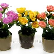Розы искусственные в горшке БелаФлора фото